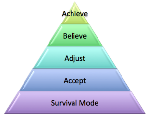 CFS Triangle of sucess